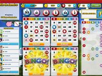 Bingo online grátis